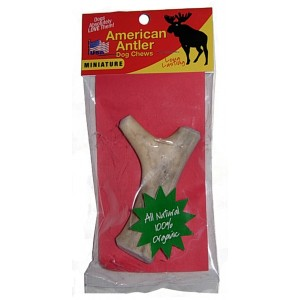 Miniature Antler Dog Chew
